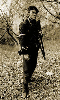 Rifleman Harris - photo copyright Jason Salkey, no unauthorised reproduction